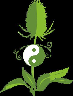 Zertifizierte Therapeutin für Traditionelle Chinesische Medizin (TCM)